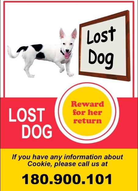 Missing Dog Poster Template  Lost Pet Poster Template